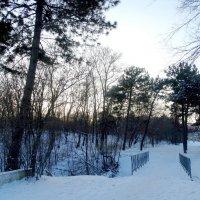 В город пришла зима... :: Тамара (st.tamara)
