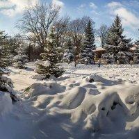 В снежном царстве :: Лидия Цапко