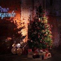 С новым годом и Рождеством :: Валерий Евстигнеев