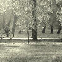 Велосипедистка в лучах заката :: Екатерина Торганская