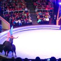 """Программа для детей """"Мир животных – мир друзей"""" в Луганском государственном цирке :: Наталья (ShadeNataly) Мельник"""