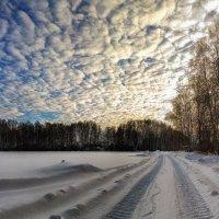 Зимний закат :: Vadim Piottukh