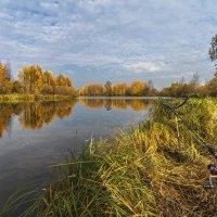 Осенняя картинка :: Георгий Кулаковский