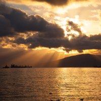 море утром 2 :: Игорь Гарагуля