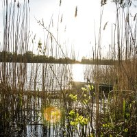 река Донец :: Никита Захаров
