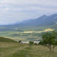 И в Северной Осетии есть своя саванна.... :: Елена Уварова