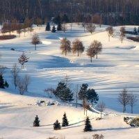 Зимние краски...(заходите, смотрите Краски осени.) :: Yuri Chudnovetz