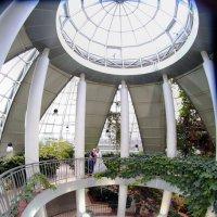 Ботанический сад :: Favel Гаврилюк
