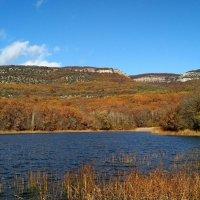 Муловское озеро :: Natali Orlova