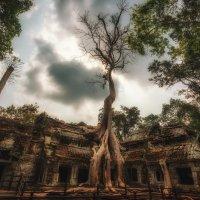 Ангкор Ват...Камбоджа! :: Александр Вивчарик