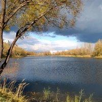 Уж небо осенью дышало... :: Валентина Данилова