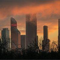 Зимний закат. :: Владимир Елкин