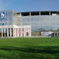 Стадион :: Елена Данько