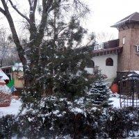 Уголок Грузии в зимнем парке... :: Тамара (st.tamara)