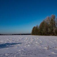 Зима в Самаре :: Николай Картаев