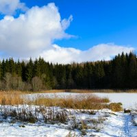 Тропинка к озеру :: Милешкин Владимир Алексеевич