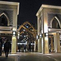 Прогулки  по  Дубаи. :: Виталий Селиванов
