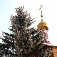 В ожидании новогоднего чуда.. :: Андрей Заломленков