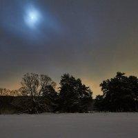 Ночь и зима :: Ард Прохоров