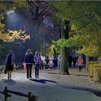 В парке :: Андрей Козлов