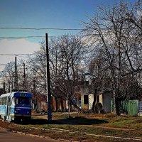 трамвай на Даче Ковалевского :: Александр Корчемный