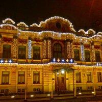дворец бракосочетания на Английской набережной (дом фон Дервизов ) :: Елена
