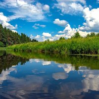 Река Осуга. :: Николай