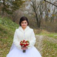 портрет :: Арина Cтыдова