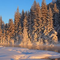 Морозные зарисовки декабря... :: Александр
