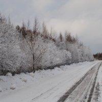 Мои дороги! :: Виктор ЖИГУЛИН.