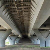 Под мостом :: Евгений Суханов
