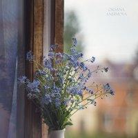 Балконный натюрмортик :: Оксана Анисимова