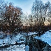 Зимняя зарисовка :: Виталий Павлов