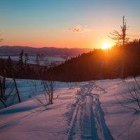 По дороге к солнцу :: Артём Удодов