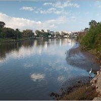 Река Яркон, Израиль. :: Lmark