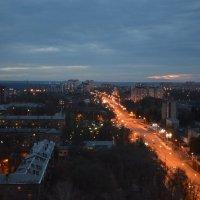 Взгляд с 21 этажа, ул. Ворошилова. :: Михаил Болдырев