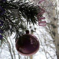 Новогодний шар :: Татьяна Смоляниченко