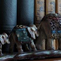 Слоники фен-шуй :: Volkov Igor