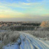 Утро зимнее. :: nadyasilyuk Вознюк