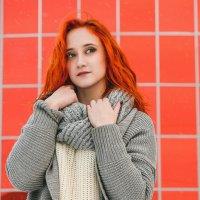 Чистый рыжий :: Андрей Липов