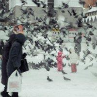Голубиная буря :: Evgenija Enot