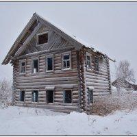 Заброшенный дом. :: Марина Никулина