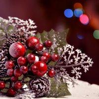 Новогоднее настроение :: Наталья Изразова