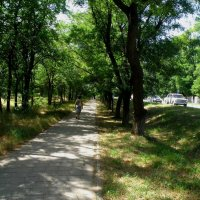 Вокзальное шоссе у Казённого сада :: Александр Рыжов