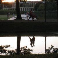 В парке :: Tanja Gerster
