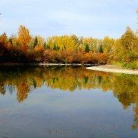 Осень отражается в  Катунской воде! :: Tatiana Lesnykh Лесных