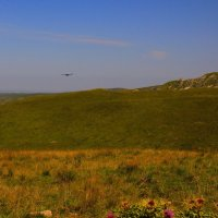 Орёл, с неподвижной поднявшись вершины, парит неподвижно со мной наравне... :: Vladimir 070549