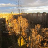 закатный свет :: tgtyjdrf