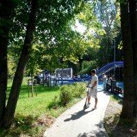 В парке :: Мила