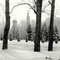 Петропавловский Храм. Пенза :: Ильгам Кильдеев